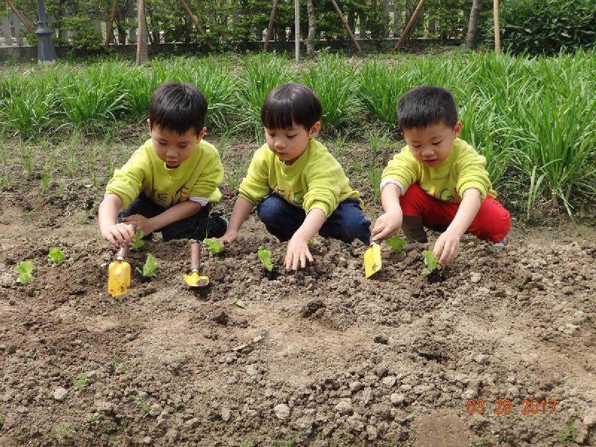 生態環境課程2